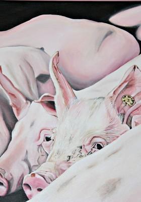 Im Schweinestall