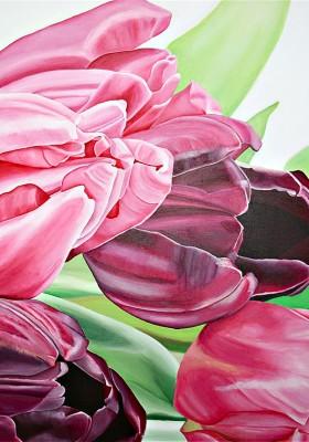Tulpen Pastell